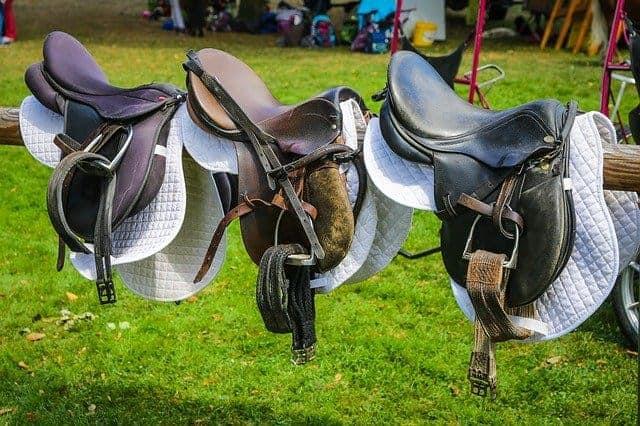 Best Endurance Saddle