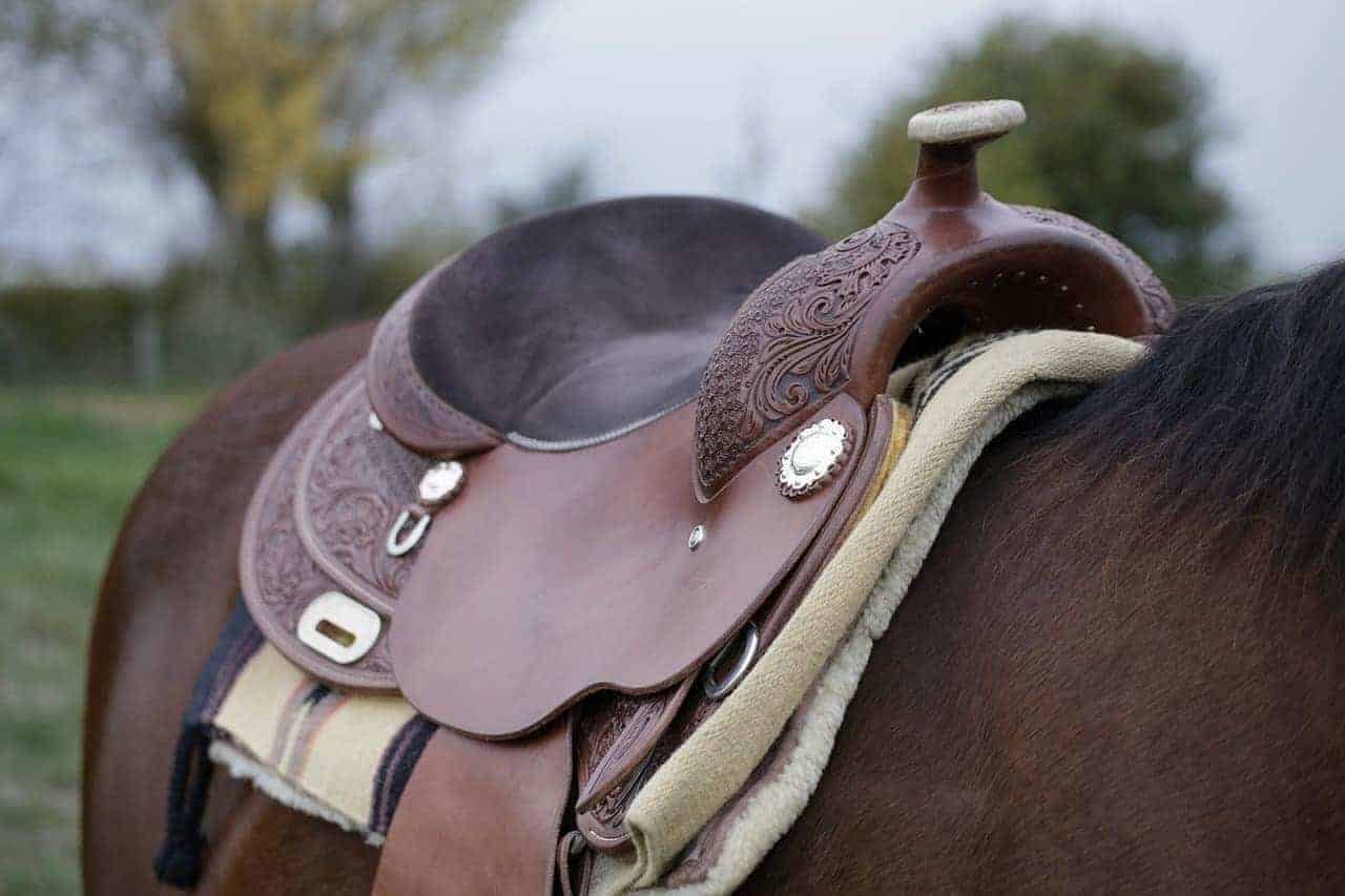 King Series Saddle for horse