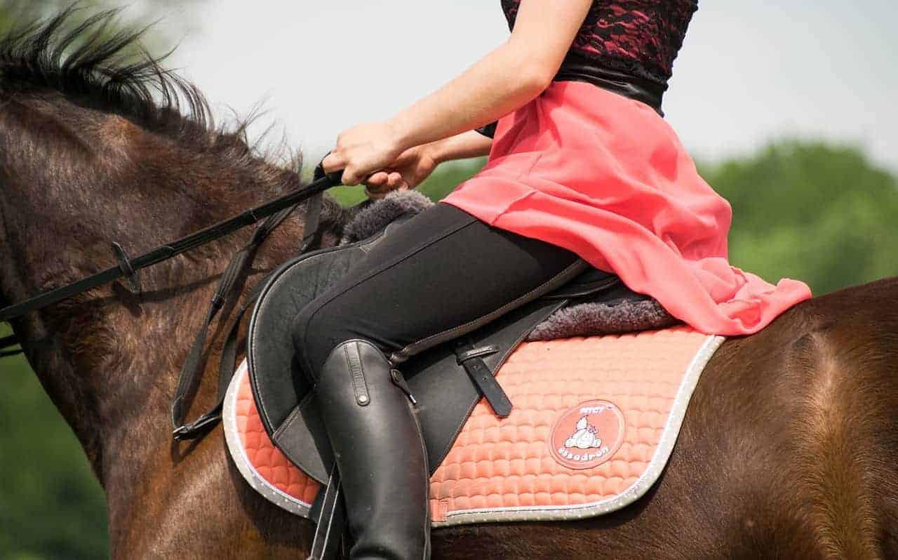 treeless saddles review