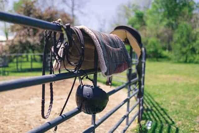 How to Clean a Wool Saddle Pad