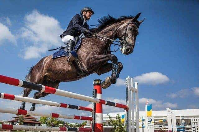 What Saddles are Recommended for Jumping