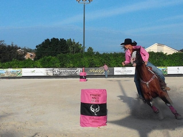 What Barrel Saddles are Strong Enough to Rope Out Of