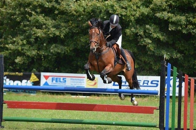 Saddles for Jumping