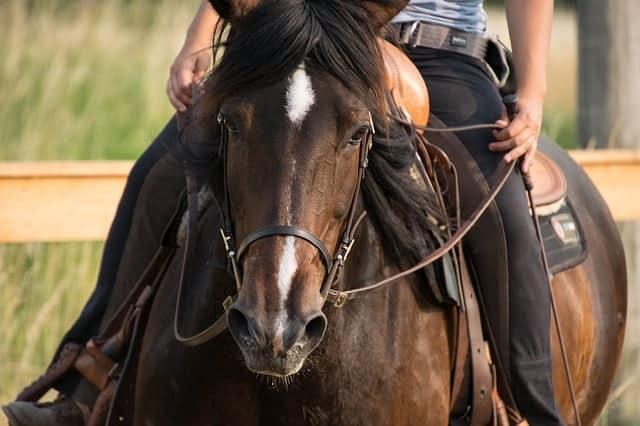 Corriente Saddle
