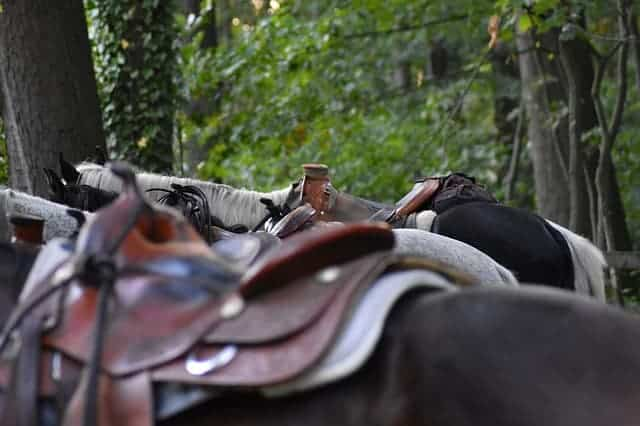 Corriente horse Saddle